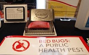 Bed Bug Summit