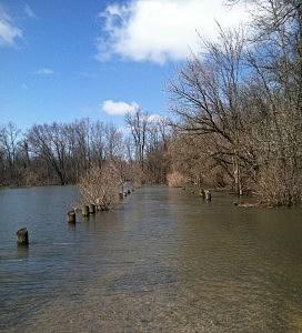 Along the Oriskany Creek